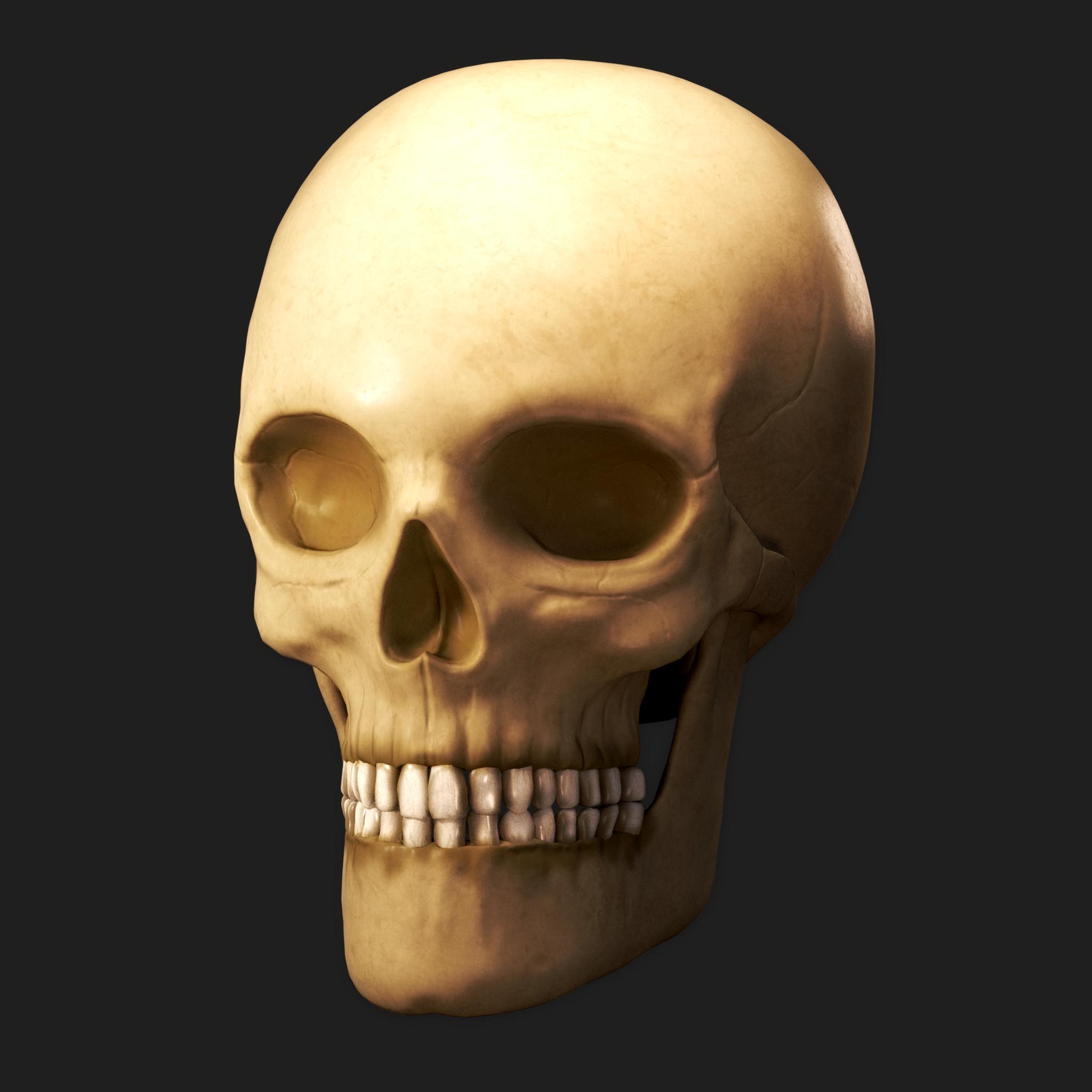 skull.0001