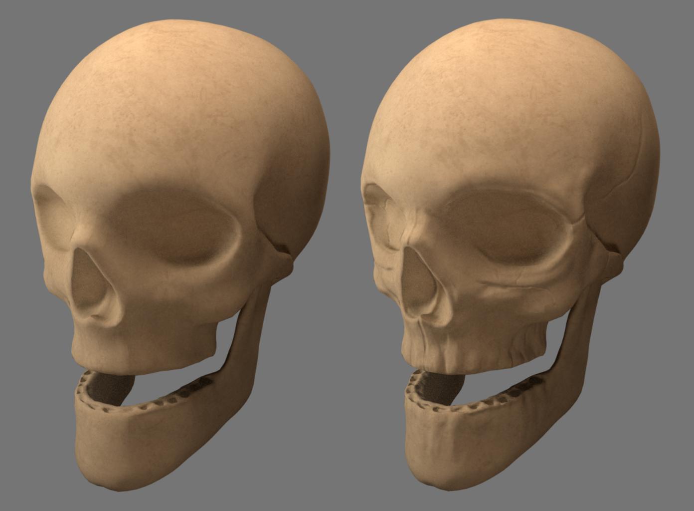 skull_render_normals