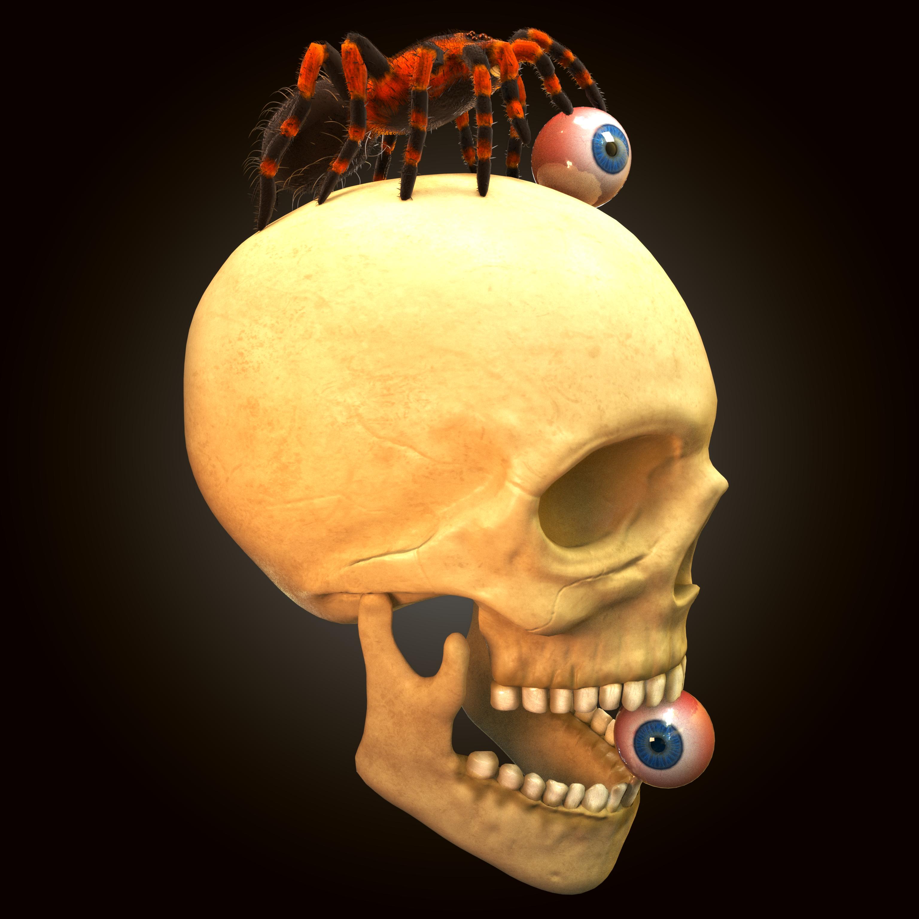 skull_tarantula_eyes__perspShape_beauty.0001.png