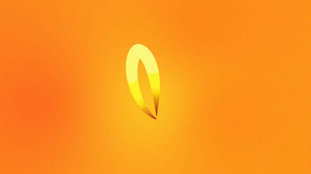 log_spiral_animation.012